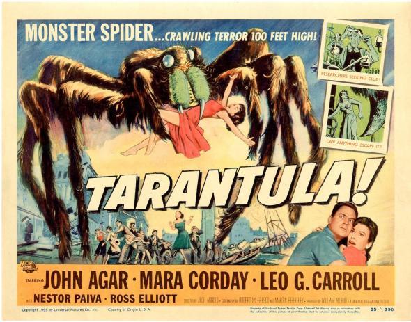 chil-tarantula.jpg