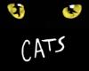 Új külsőt kapnak a Macskák is